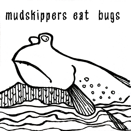 mudskipper illustration