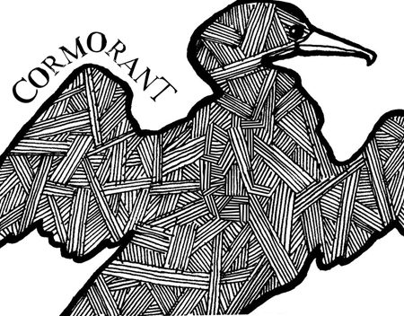 cormorant illustration